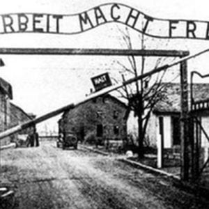 An Updated International Red Cross Audit Records a Total 282,077 Deaths of All Internees in all German Concentration Camps from All Causes.