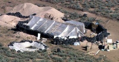 Police Arrest Five New Mexico Jihadists Allegedly Training Kids for School Shootings