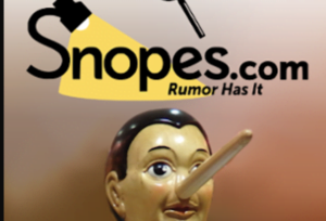Snopes Suspends Co-Founder For Fake News